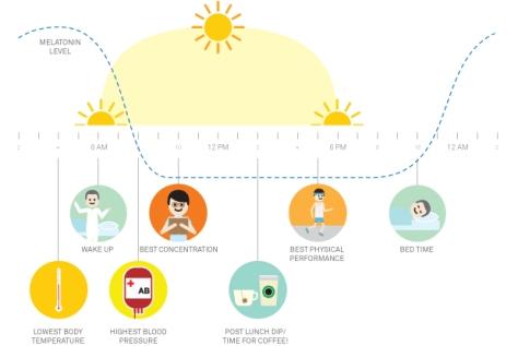 wakeup-infographic