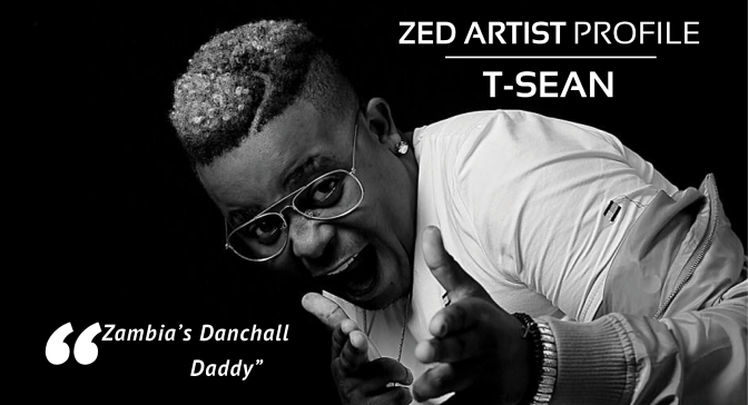 Zed Artist Profile | T-Sean